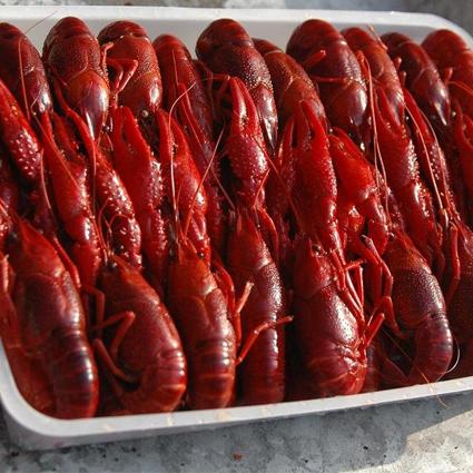 Cooked Crawfish 1kg