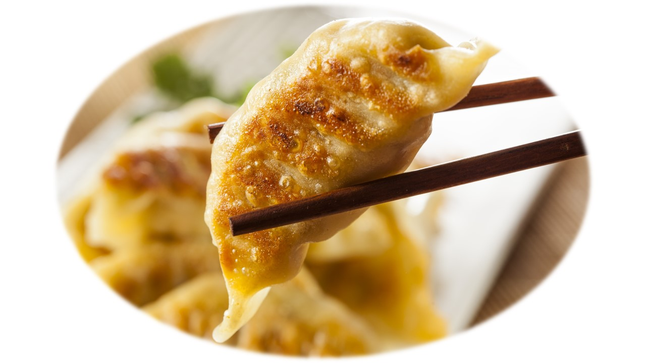 Gyoza Chicken 25gm